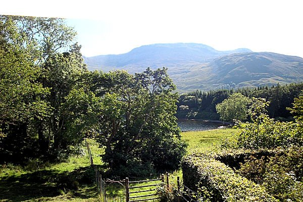 Gruline Estate